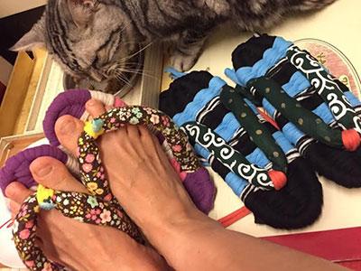 布草履と猫
