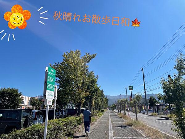 秋晴れ晴天